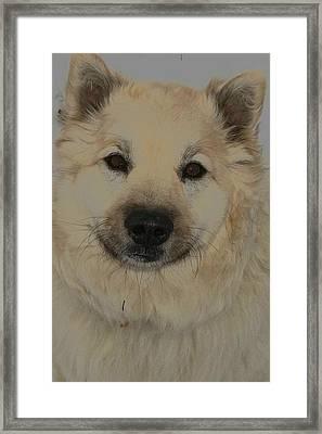 Wolf Magic Framed Print by Wide Awake Arts
