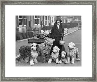 Woman And Pets Framed Print