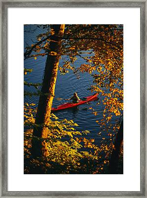 Woman Seakayaking On The Potomac River Framed Print by Skip Brown