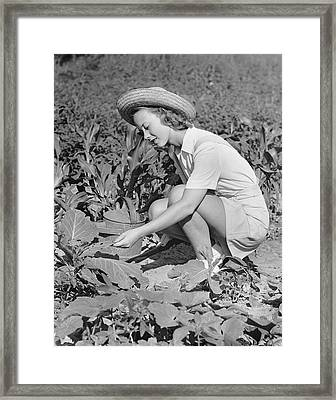 Woman Working In Garden Framed Print by George Marks