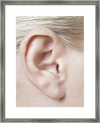 Woman's Ear Framed Print by
