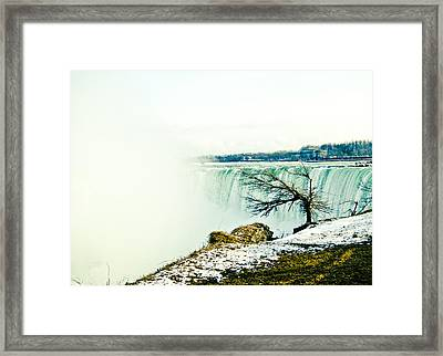 Wonder Framed Print by Sara Frank
