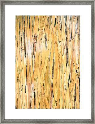 Wood Detail Framed Print by Tom Gowanlock