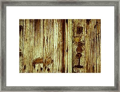 Wood Grain Framed Print by Georgia Fowler