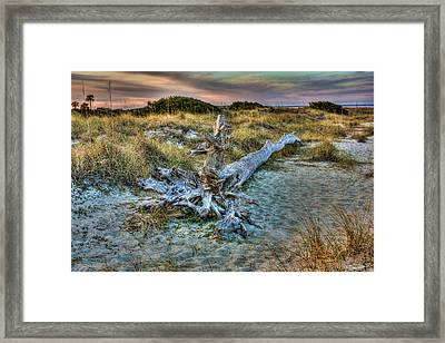 Framed Print featuring the photograph Wood by Joetta West