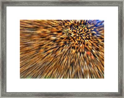 Wood Pile Blur Framed Print