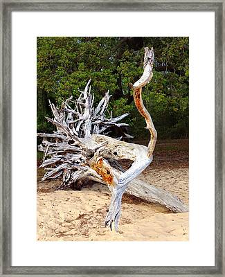 Wood Sculpture Framed Print by Joan Meyland