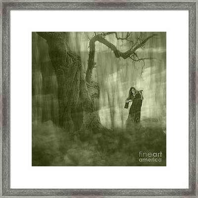 Wood Sonata Framed Print by Witaliy Sapeka