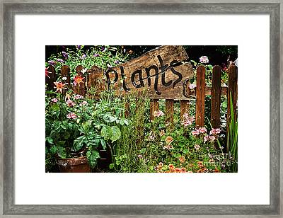 Wooden Plant Sign In Flowers Framed Print