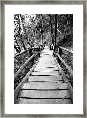 Wooden Stairs Framed Print by Falko Follert