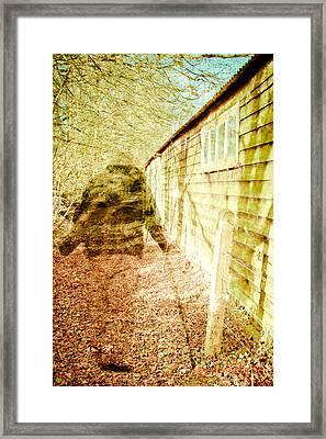 Woodland Ghost Framed Print by Tom Gowanlock