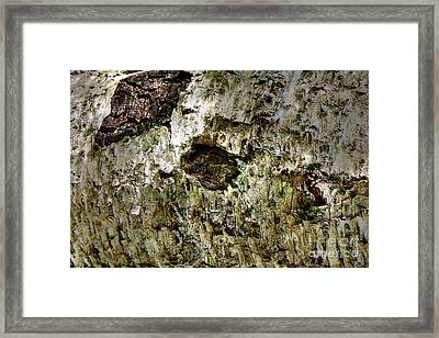 Framed Print featuring the photograph Woodoh 4 by Cazyk Photography