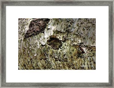 Woodoh 4 Framed Print