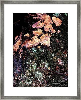 Woodoh2 Framed Print