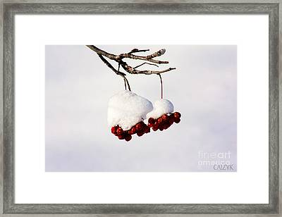 Framed Print featuring the photograph Woodoh3 by Cazyk Photography
