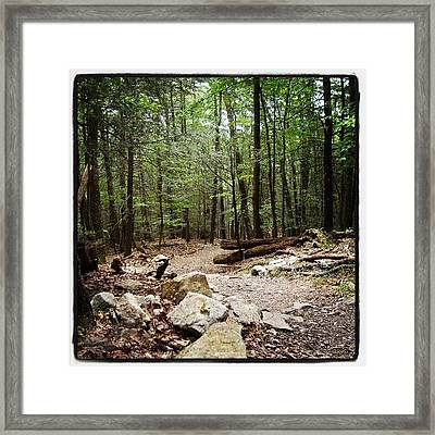 #woods #forest #trail #mountains Framed Print