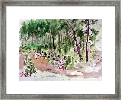 Woods Sketch Framed Print by Peter Edward Green