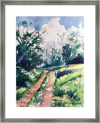 Woodsy Trail Framed Print by Jon Shepodd