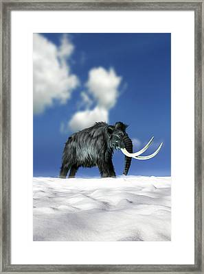 Woolly Mammoth, Artwork Framed Print by Victor Habbick Visions