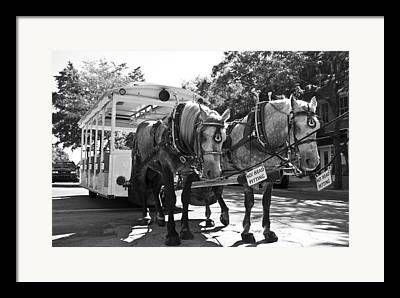 Horse Driven Wagon Framed Prints