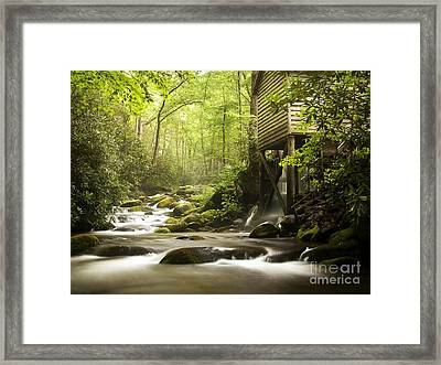 Working Together Framed Print by Bill Stone