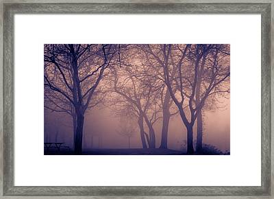 World On Fire Framed Print