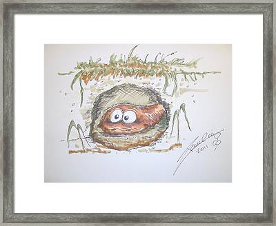 Wormhole Framed Print by Paul Chestnutt