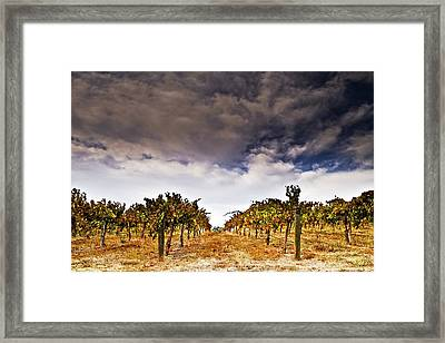 Framed Print featuring the photograph Worth The Wait by Ryan Weddle