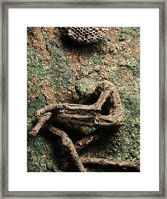 Wounds Framed Print