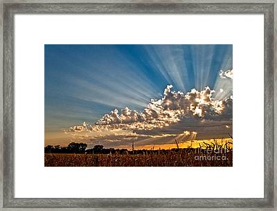 Wow Moment Framed Print