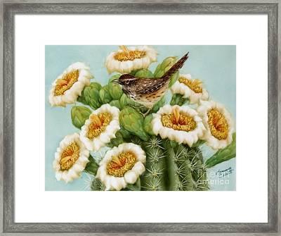 Wren And Saguaro Blossoms  Framed Print by Summer Celeste