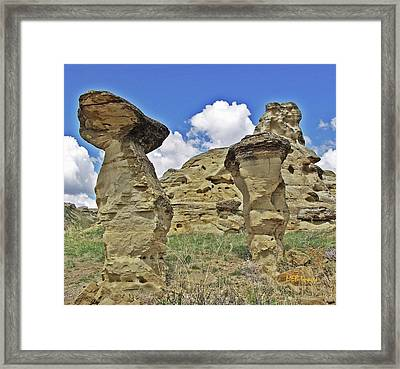 Writing On Stone 1 Framed Print by Margaret Buchanan