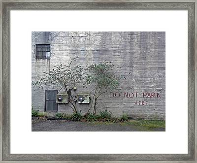 Writing On The Wall  Framed Print by Pamela Patch