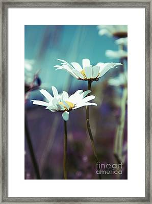 Xposed - S02 Framed Print by Variance Collections