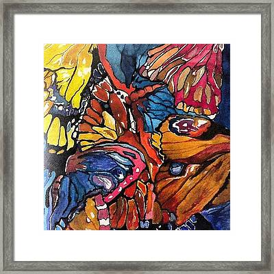 Butterflies Wings........ Framed Print