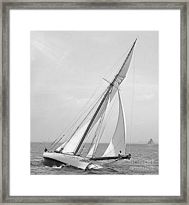 Yacht Shamrock In New York Harbor 1895 Bw Framed Print by Padre Art