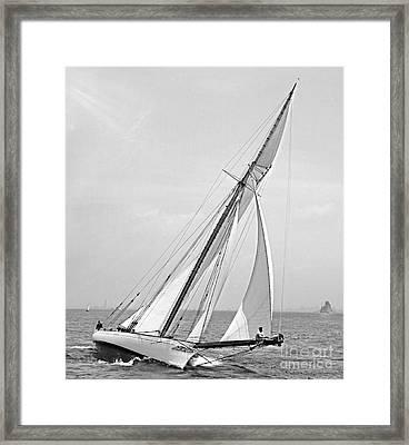 Yacht Shamrock In New York Harbor 1895 Bw Framed Print