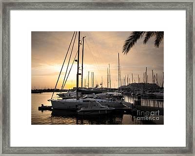 Yachts At Sunset Framed Print by Carlos Caetano