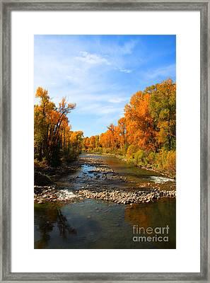 Yampa River Framed Print by Dana Kern