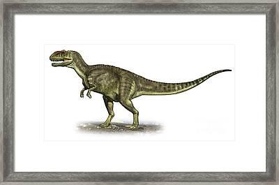 Yangchuanosaurus Shangiouensis Framed Print by Sergey Krasovskiy