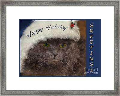 Yankee Cat Framed Print by Joann Vitali