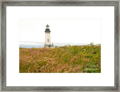Yaquina Head Lighthouse In Oregon Framed Print by Artist and Photographer Laura Wrede
