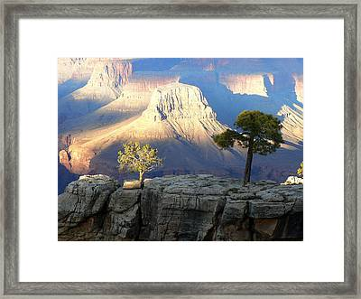Framed Print featuring the photograph Yavapai Point Cliff Hangers by Scott Rackers