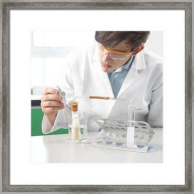 Yeast Carbon Dioxide Test Framed Print by