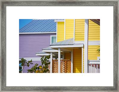 Yellow 3 Purple1 Framed Print