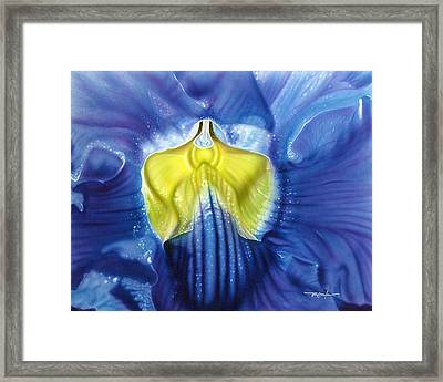 Yellow And Blue Framed Print by Dan Menta