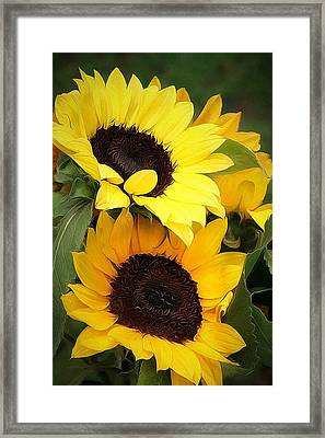 Yellow And Green Framed Print by Cathie Tyler