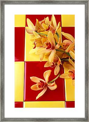 Yellow And Red Orchids  Framed Print by Garry Gay