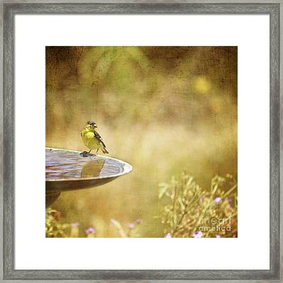 Yellow Bird Upon A Fountain Framed Print