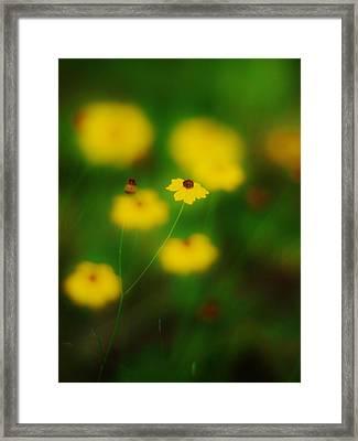 Yellow Bliss Framed Print by Lynda Dawson-Youngclaus